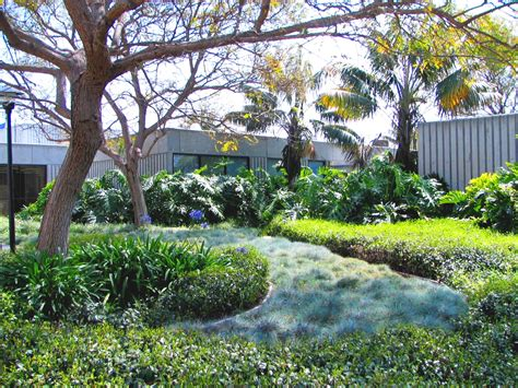 Landscape Supply Santa Barbara Santa Barbara Landscaping With Recycled Water