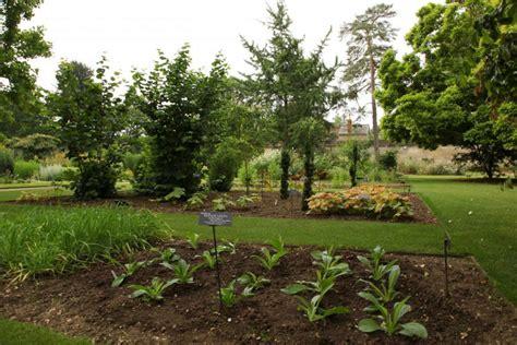 jardin xochimilco crean jard 237 n para conservaci 243 n de plantas medicinales de