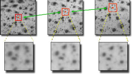 pattern image correlation correlated solutions dic