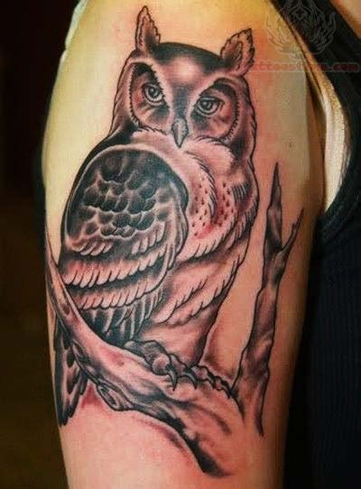 owl half sleeve tattoo owl sitting on tree on half sleeve