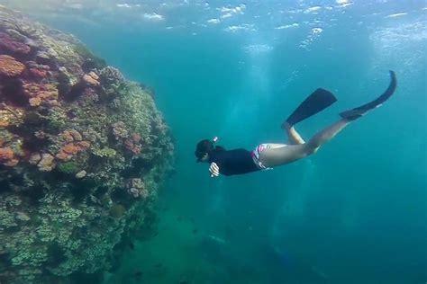 dive skins padi skin diver at underwater vision in utila honduras
