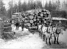 10 best MN Logging images on Pinterest | Journals, Logs ... Logging Camp History