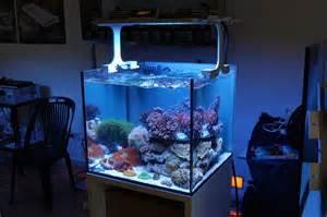 beleuchtung nano aquarium xaqua nano reef led reef aquarium light