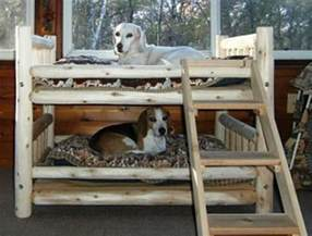 Bunk Bed For Dogs Fabulous Bed Design Ideas Your Pets Will Enjoy The Owner Builder Network