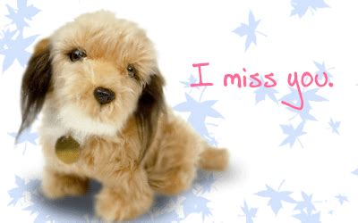 i miss you puppy miss you pictures images graphics comments scraps for orkut hi5 myspace