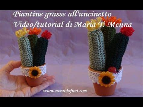 Piante Grasse Mignon by Piantine Grasse Mignon All Uncinetto Succulent Plants