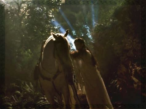 the lord of the arwen lord of the rings wallpaper 3059999 fanpop