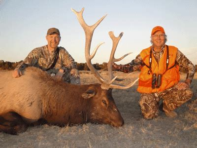 Buckmaster Sweepstakes - 2011 cow elk full draw outfitters