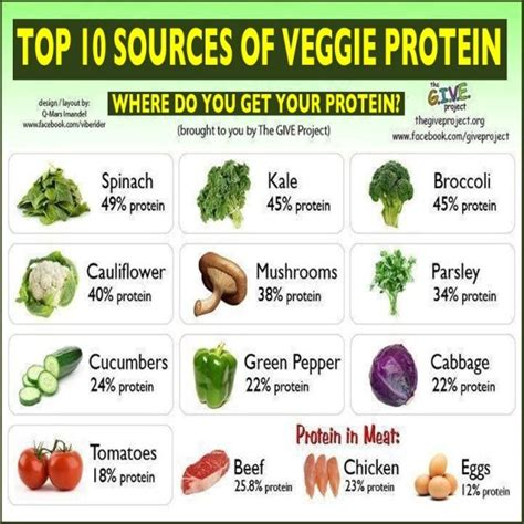 Sources Of Protein by Sources Of Protein Healthy Easy Recipes