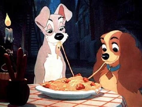 can dogs eat noodles can dogs eat pasta spaghetti noodles is it or bad for them alldogsworld