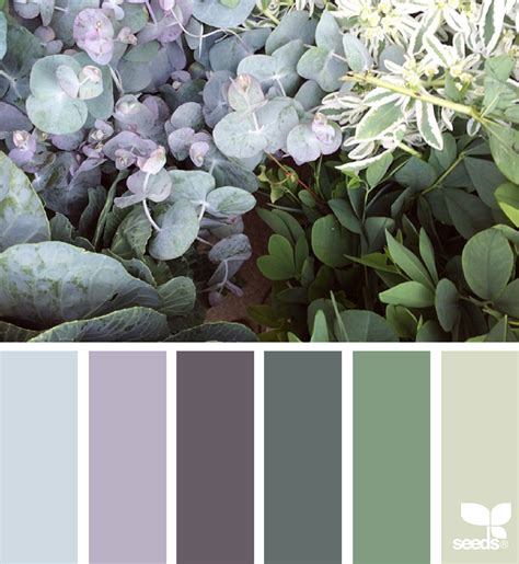nature colors nature tones design seeds