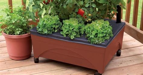 home depot city pickers raised garden bed