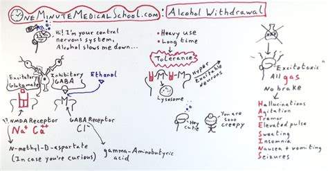What Happens When You Detox Alchol And Hallucinate by Withdrawal Delirium Delirium Tremens