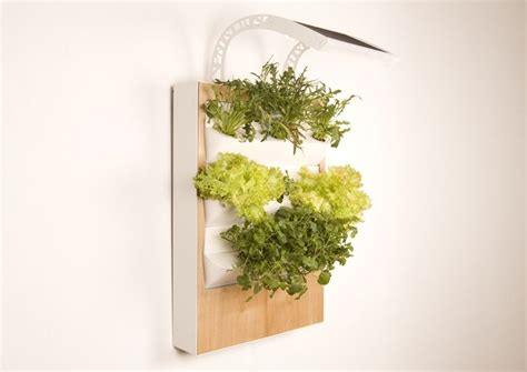 indoor hydroponic wall garden herbert a smart hydroponic wall garden for urban spaces