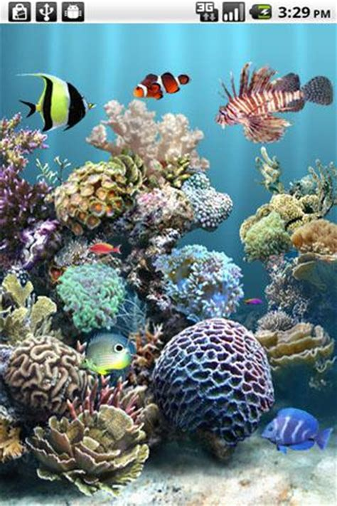 live wallpaper for pc cnet anipet aquarium livewallpaper for android free download
