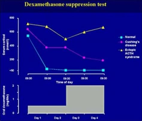 dexamethasone for dogs dexamethasone suppression test cat