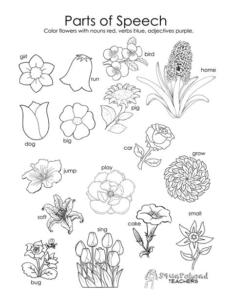 printable worksheets about flowers free parts of speech worksheet squarehead teachers