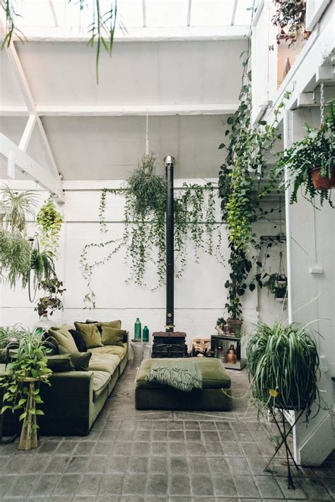house plants interior design modern design for house plants interior in your home cicbizcom nurani