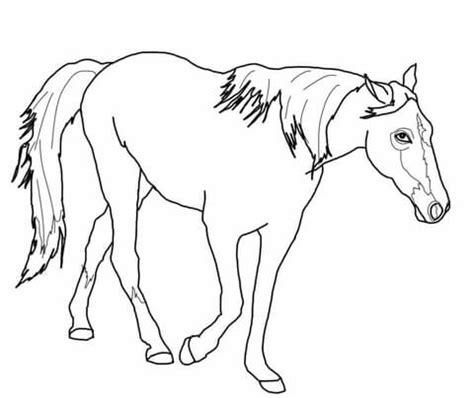 black and white coloring pages of horses kolorowanka koń tennessee walker kolorowanki dla dzieci