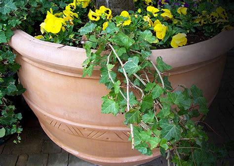 vasi in vetroresina vasi grandi da giardino per arredare fai da te in giardino