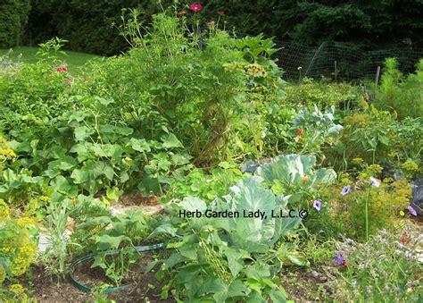 herb garden basics start this basic herb garden and enjoy your own herb garden