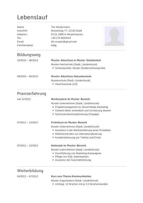 Lebenslauf Vorlage Grafiker Bewerbungsmuster F 252 R Programmierer Lebenslauf Designs
