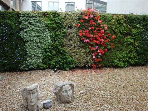 decorar paredes de jardines plantas para decorar las paredes ideas para jardines y