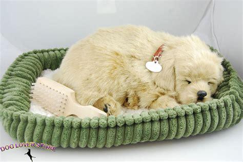 lifelike puppy golden retriever petzzz like stuffed animal breathing