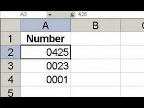 excel tutorial left how to keep leading zeros on left in excel 2010 video