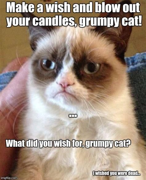 Create Grumpy Cat Meme - grumpy cat meme imgflip