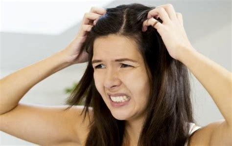 menghilangkan kutu rambut  telurnya secara alami