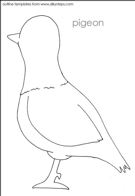 printable parrot template bird outlines crafts