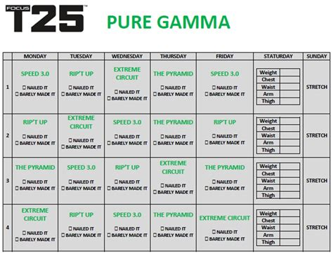 printable gym schedule t25 alpha workout schedule printable workout