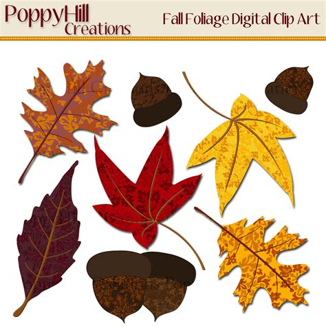 printable fall leaves clip art leaves clipart printable pencil and in color leaves