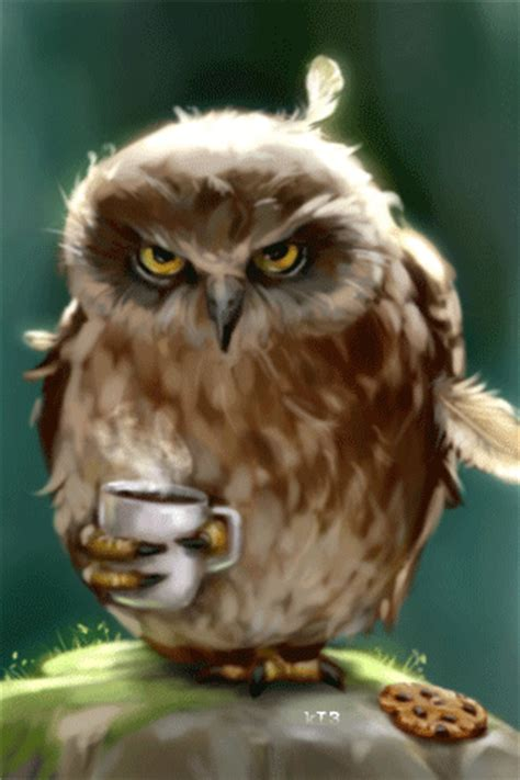 owl coffee new year she propably needs the coffee fall my favorite time