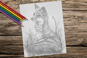 grayscale coloring coloring page fox grayscale coloring pages instant