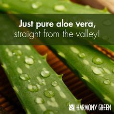 Of The Valley Detox Aloe by Do You Trouble Getting Your Daily Vitamin Intake