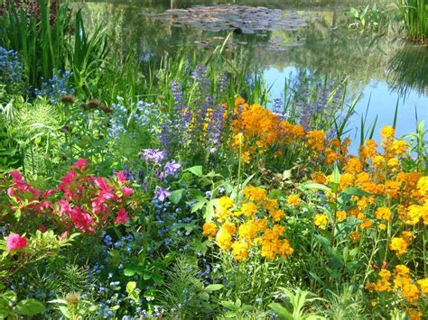 Monet Flower Garden Monet S Flower Garden In Giverny Schmidt S