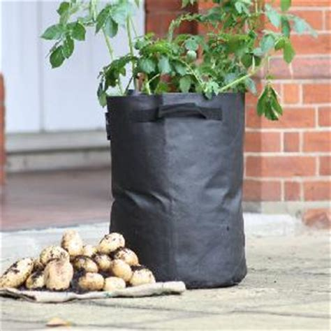 Patio Potato Planters by Potato Planter From Patio Growing Allotment Shop