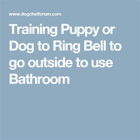training a puppy to go to the bathroom outside how to train dog to go to bathroom outside 28 images