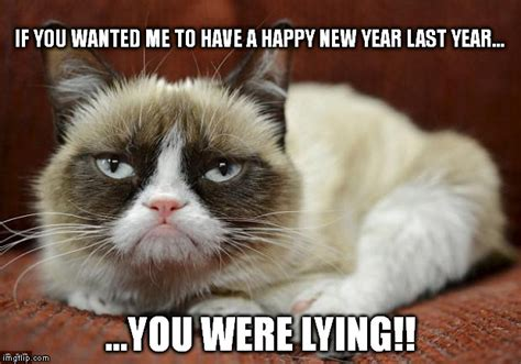 grumpy cat new year grumpy cat new year imgflip