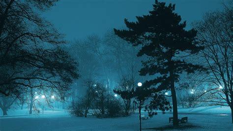 bluish winter  ultrahd wallpaper wallpaper studio