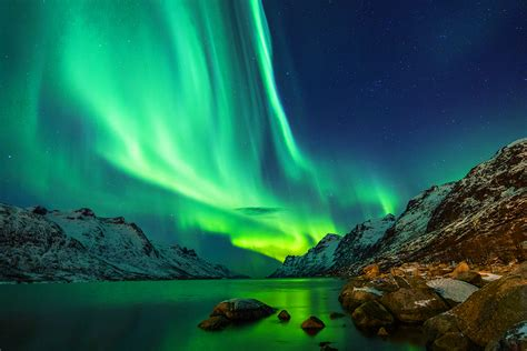 scandinavian cruise northern lights in search of the northern lights cruise webjet