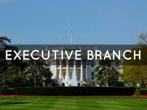 Executive Branch Cabinet 17 Best Ideas About Branches Of Government On