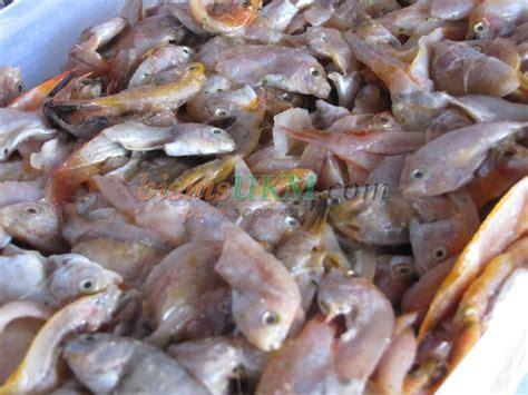 Buku Aneka Olahan Ikan Bandeng sukses dengan bisnis aneka olahan ikan
