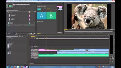 tutorial for video editing adobe premiere pro cs6 tutorial basic editing doovi