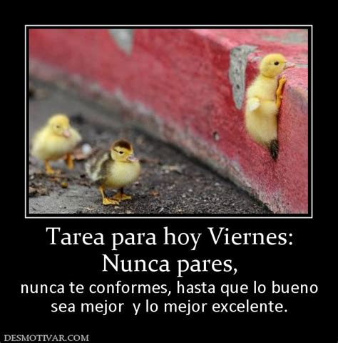 tarea para viernes chistes y memes espa 241 oles on pinterest spanish jokes