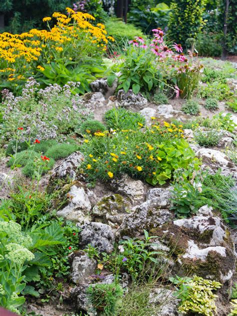 rock garden how to how to build and plant an alpine rock garden david domoney