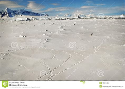 school in snow royalty free stock image image antarctica landscape of snow and stock image image