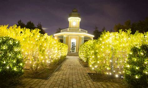 st louis botanical gardens lights 17 best images about events for your st louis
